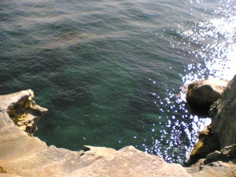 South_head_cliffs